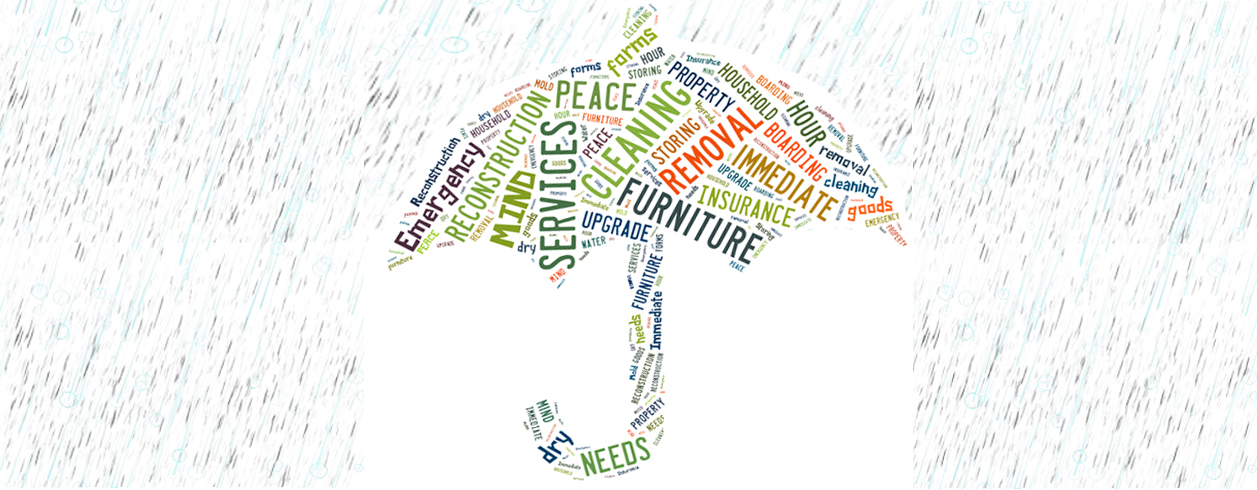 Our Umbrella of Services Protects your Peace of Mind